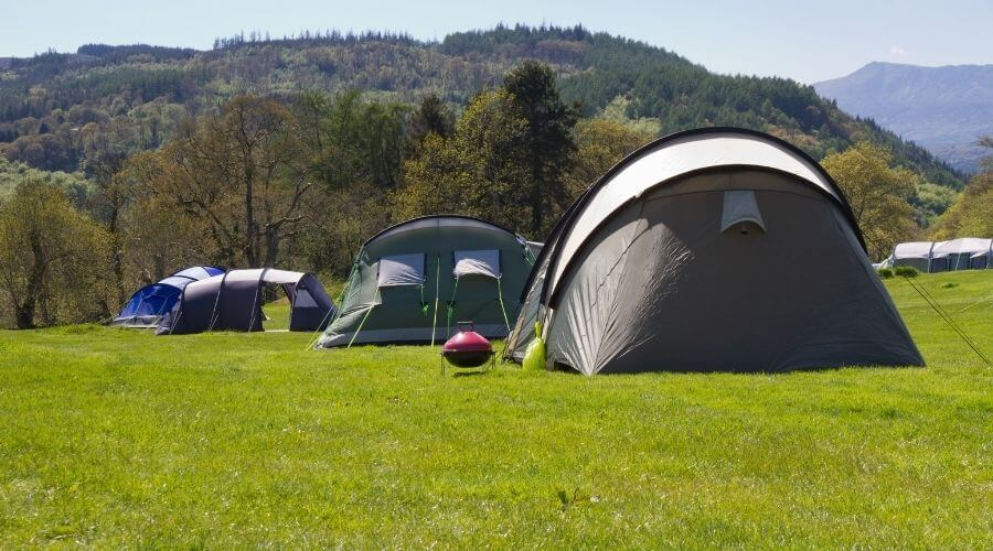 A couple of 12 person tents pitched on the grass close to the forest